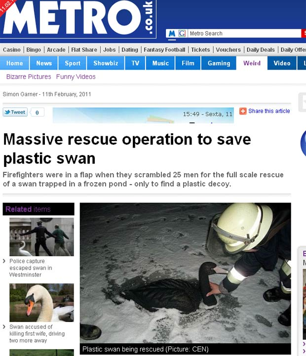 Operação usou 25 pessoas para resgatar cisne de plástico de lago congelado. (Foto: Reprodução)