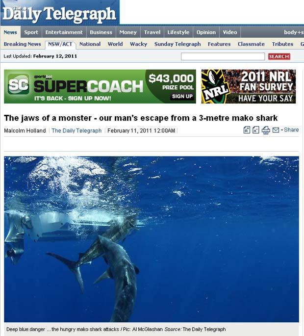 Marlin teve sua cauda inteira arrancada pela mordida. (Foto: Reprodução)