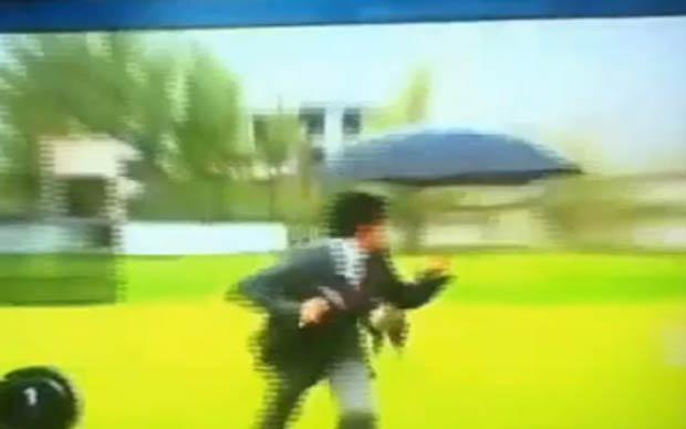 Repórter parou a apresentação ao ser perseguido por uma alpaca. (Foto: Reprodução)