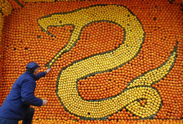Homem faz escultura de cobra com laranjas e limões em Menton, na Riviera Francesa, em homenagem ao 'Festival do Limão'. (Foto: AFP)