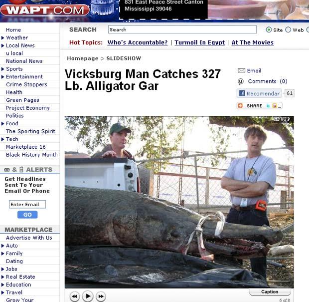 Peixe pesa quase 150 quilos e mede 2,57 metros de comprimento. (Foto: Reprodução)