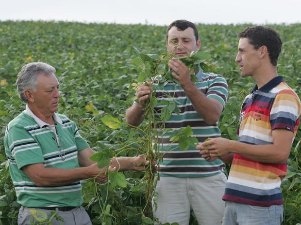 Ari Marcolin e seus dois filhos em Catanduvas, Piaui e Paraná são 'uma só fazenda'. (Foto: Hugo Harada/Gazeta do Povo)