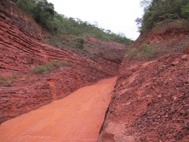 Estrada que dá acesso à comunidade de Nova Santa Rosa, no sudoeste do Piauí. Estreita, irregular e sem pavimentação. (Foto: Ligia Guimarães/G1)