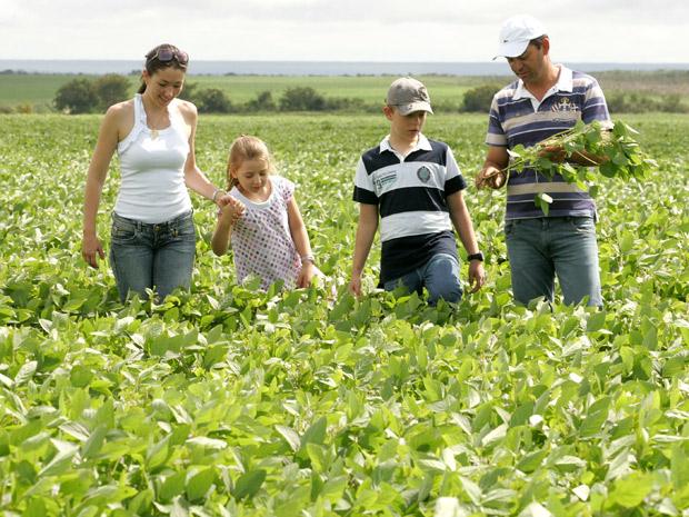 Geisa, Brenda, Eduardo e Wilson: quarta geração de produtores é feita de 'piúchos'. (Foto: Hugo Harada/Gazeta do Povo)