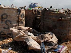 Catadores de lixo temem fim dos lixões  (Foto: Alexandre Durão/G1)
