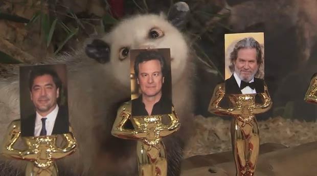 'Heidi' também acertou a vitória de Colin Firth como melhor ator. (Foto: Reprodução)