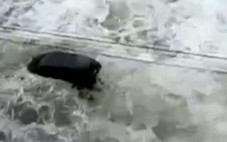 Vídeo mostra tsunami levando carro na costa (Reprodução)