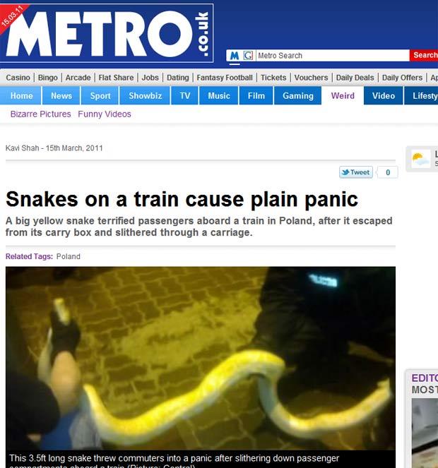 Cobra dá susto em passageiros de trem na Polônia. (Foto: Reprodução/Metro)