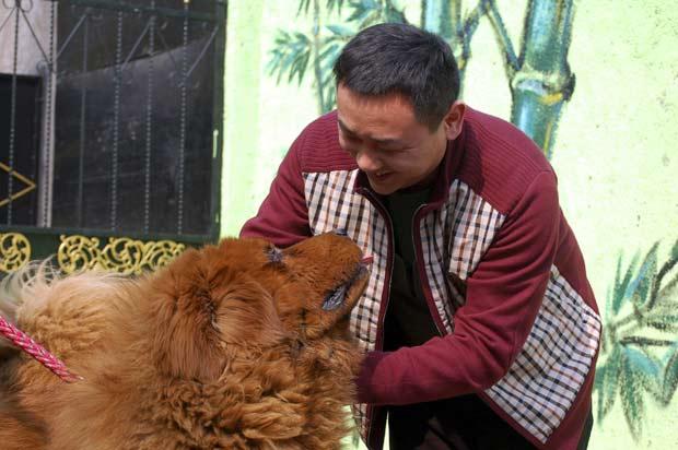 Yang brinca com seu cão de estimação de US$ 1,5 milhão. (Foto: AP)