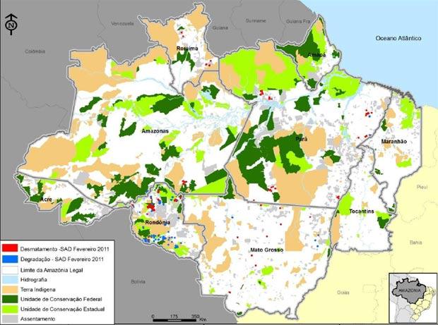 Desmatamento fevereiro (Foto: Reprodução/TV Globo)