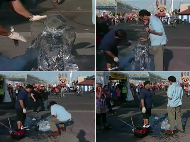 Em agosto de 2010, um repórter acabou destruindo uma escultura de gelo de escultor Roland Hernandez durante uma reportagem na feira do condado de Orange, em Costa Mesa, no estado da Califórnia (EUA). (Foto: Reprodução)