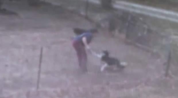Noelle Stanbridge foi presa depois que um morador enviou o vídeo para as autoridades. (Foto: Reprodução)