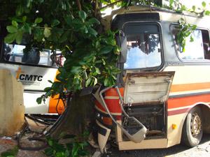Um dos ônibus bateu em árvore ao perder controle, em Goiânia (Foto: Divulgação/Corpo de Bombeiros-GO)