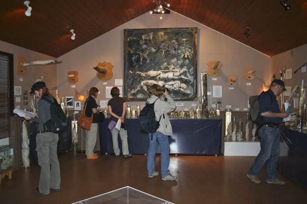 Turistas visitam museu do pênis nesta terça-feira em Husavik. (Foto: AP)