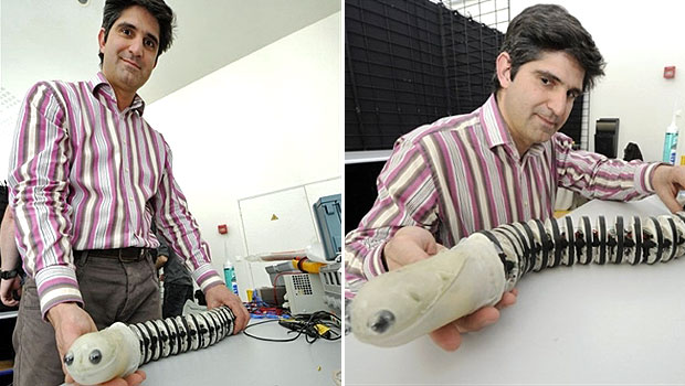 O professor italiano Cesare Stefanini apresentou um robô biônico que imita uma espécie de peixe chamada Lampreia durante o Workshop Internacional de Robôs Bioinspirados. O evento, realizado em Nantes, na França, reúne cerca de 200 pessoas de 17 países para exibir robôs que imitam formas e movimentos de animais.  (Foto: Damien Meyer/AFP)