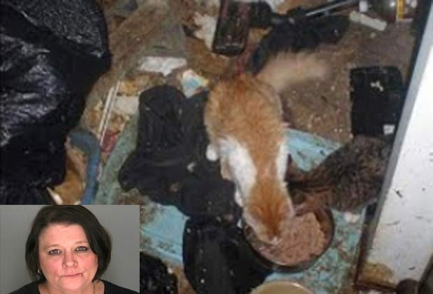 Betty Bjorkman vivia com 100 gatos e três furões em meio ao lixo. (Foto: Reprodução)