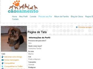 Perfil de um dos cães cadastrados no 'cãosamento' (Foto: Reprodução Internet)