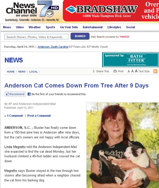 ''Buster' foi resgatado depois de ficar preso por nove dias em árvore. (Foto: Reprodução)