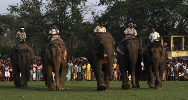 Corridas de elefantes são realizadas durante o festival. (Foto: Anupam Nath/AP)