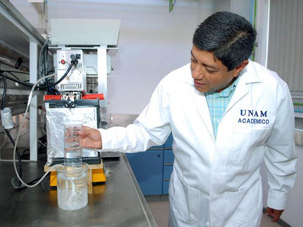 México bactéria hidrogênio 1 (Foto: Unam / Divulgação)