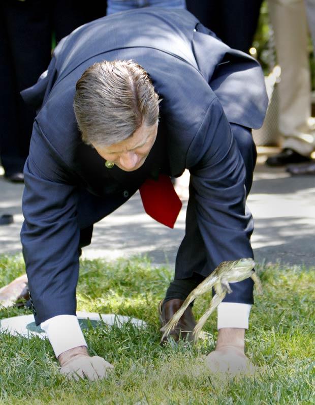 Deputado Brian Jones incentiva seu sapo 'Jeb' a saltar durante o campeonato. (Foto: Rich Pedroncelli/AP)