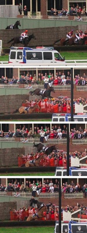 Imagens mostram o cavalo invadindo a arquibancada (Foto: Reuters)