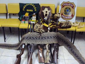 Ibama e PF apreendem armas e pele de cobra em fazenda de MS (Foto: Divulgação/Ibama)