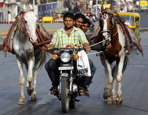 Motociclista foi visto levando dois passageiros enquanto eles puxavam dois cavalos. (Foto: Amit Dave/Reuters)