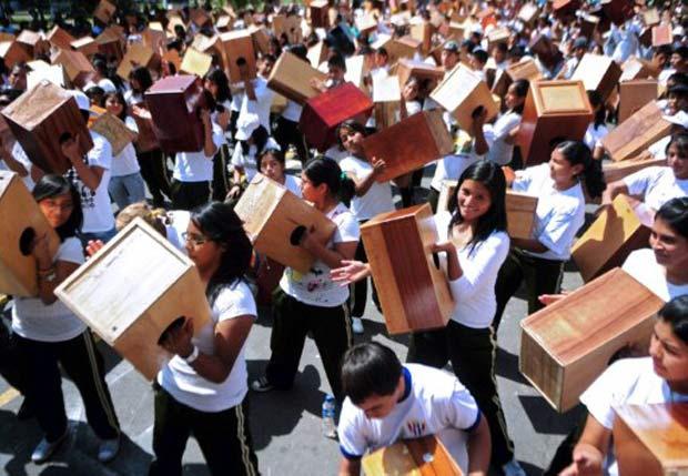 Por recorde, peruanos tocam juntos instrumento de percussão