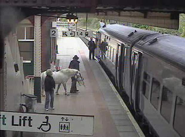 Homem pretendia fazer uma viagem de trem no País Gales levando um pônei. (Foto: Arriva Trains Wales/PA/AP)