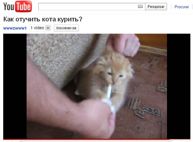 Dono tenta tirar o cigarro da boca do felino. (Foto: Reprodução)