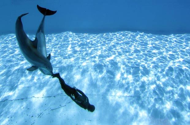 Simone Arrigoni foi escoltado por golfinhos chamados 'Paco' e 'Marco'. (Foto: Alessandro Bianchi/Reuters)