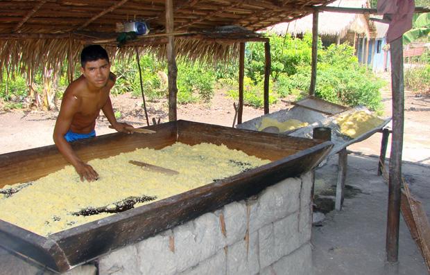 Produção de farinha na comunidade Tapajós-Arapiuns (Foto: Divulgação/ICMBio)