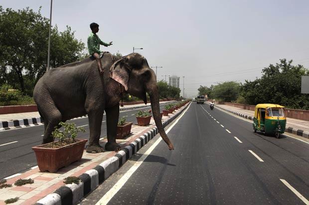 Homem foi flagrado fazendo sinal com a mão enquanto tentava cruzar com seu elefante uma avenida em Nova Déli, na Índia. Flagra foi feito pelo fotógrafo Manish Swarup nesta terça-feira (24). (Foto: Manish Swarup/AP)