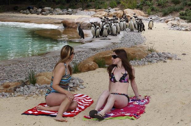 Evelyn Guyett (esq) e Rowena Fisher posam ao lado da nova piscina dos pinguins. (Foto: Suzanne Plunkett/Reuters)
