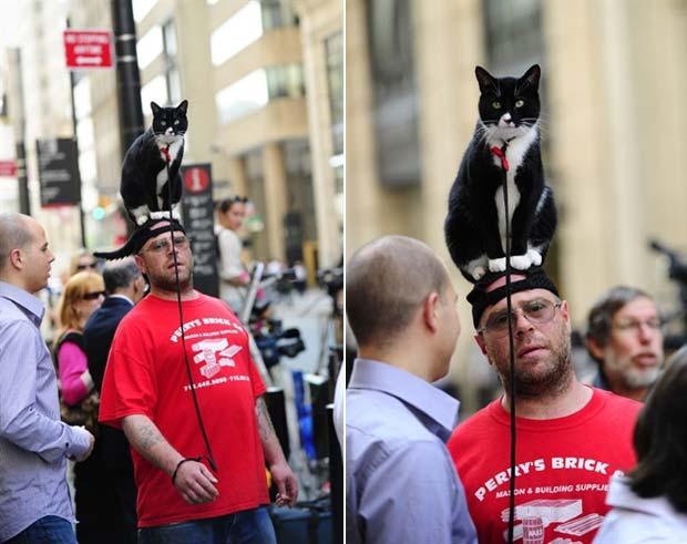 Homem foi flagrado caminho com um gato em cima da cabeça. (Foto: Emmanuel Dunand/AFP)