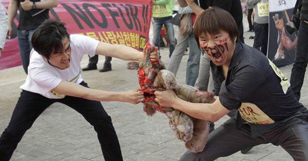 Ativistas sul-coreanos fizeram nesta quinta-feira (2) um protesto na capital Seul contra um desfile da grife italiana Fendi, e despedaçaram um animal de mentira, que havia sido preparado com sangue falso em seu interior. (Foto: AP)