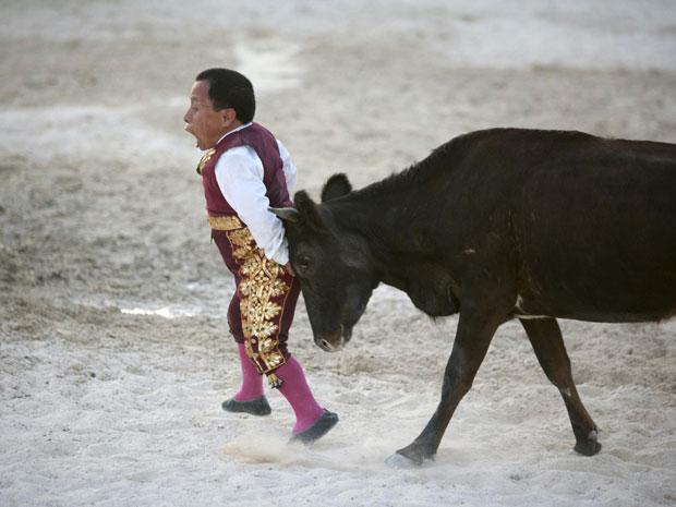 O grupo de comediantes 'Los Enanitos Toreros' (Anões Toureiros) é composto por seis anões e viaja pelo México para entreter o público com 'minitouradas'. Na imagem, Osvaldo Hernandez é atingido por um dos bezerros usados nas apresentações. Diferentemente das touradas originais, os animais não são feridos. (Foto: Reuters)