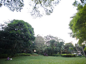 Parque Buenos Aires (Foto: Daigo Oliva/G1)