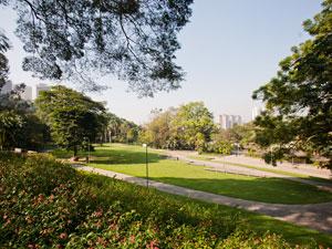 Parque Burle Marx (Foto: Daigo Oliva/G1)