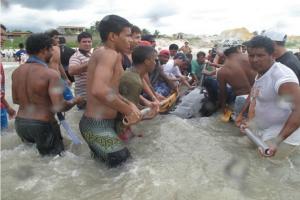 Moradores ajudam a desemcalhar baleia-piloto no Ceará (Foto: ONG Aquasis/Divulgação)