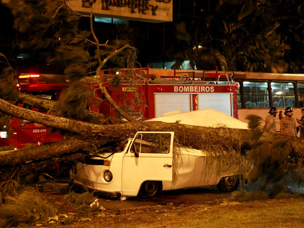 Árvore atingiu pelo menos três carros na Zona Sul (Foto: Carlos Ivan / Agência O Globo )