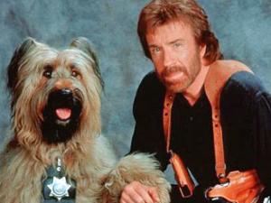O ator Chuck Norris no filme 'Top dog' (Foto: Divulgação)