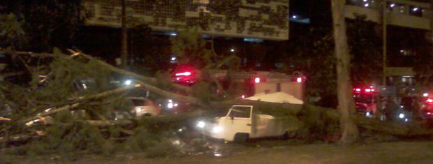 Um dos ocupantes da Kombi morreu com o impacto da queda da árvore no veículo, na Zona Sul (Foto: Fábio Soler / Arquivo pessoal)