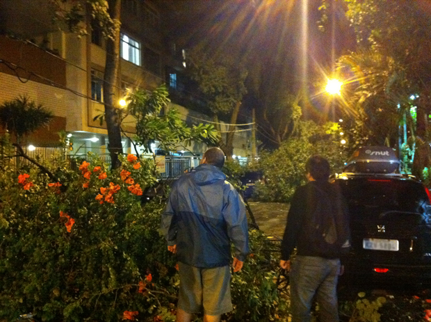 Queda de árvore em Ipanema (Foto: Mariana Carneiro/VC no G1)