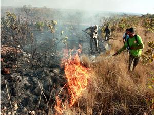 Queimadas em Mato Grosso (Foto: Divulgação / Assessoria)