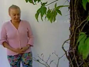 Aposentada é condenada a pagar multa por poda de árvore e tem bens penhorados como garantia (Foto: Reprodução/TV Gazeta de Vitória)