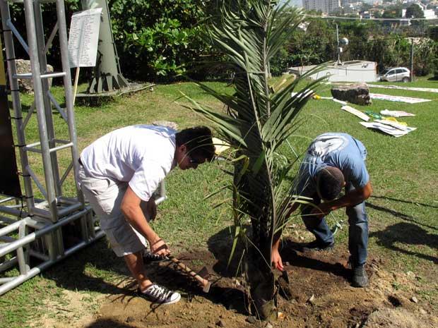 O irmão de Patrícia, Adriano Franco (à esq.), planta uma palmeira com a ajuda de um amigo. (Foto: Bernardo Tabak/G1)