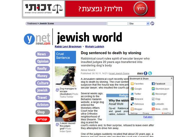 Corte sentenciou cão à morte, diz site de notícias de Jerusalém (Foto: Reprodução)