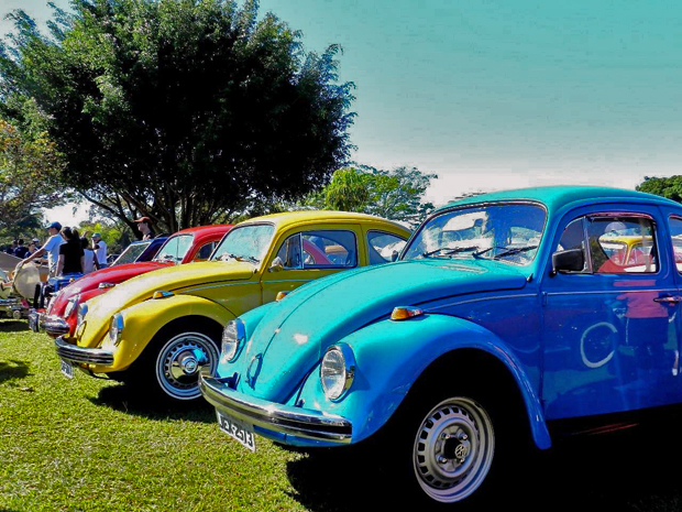 Veículos raros, como um exemplar de 1961, participaram de carreata neste domingo (19), em Brasília, em homenagem ao Dia Mundial do Fusca. (Foto: Marcelo Bressan / Divulgação)